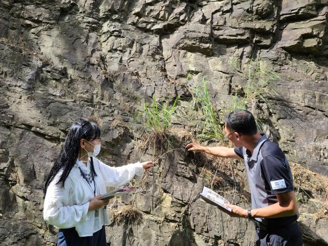 7월 지질명소(화순서유리공룡화석지) ...